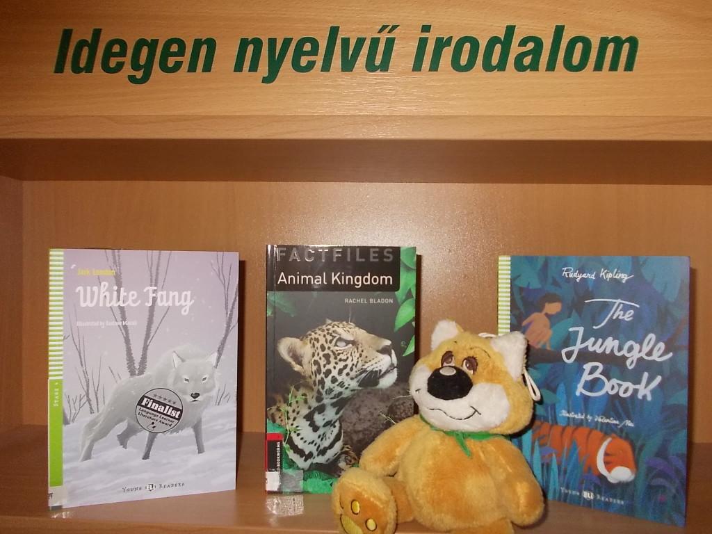 Új idegen nyelvű könyvek a városi könyvtárban