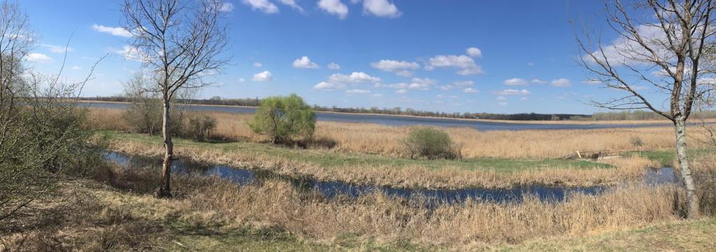 Ökoturisztikai célpont lehet a Péteri-tó